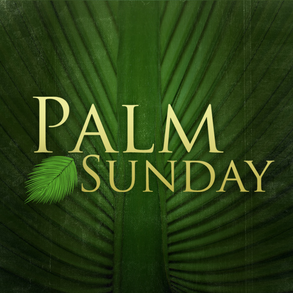 palm sunday 2017 - photo #3